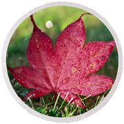Red Maple Leaf And Dew Round Beach Towel