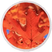 Peak Color Maple Leaves Round Beach Towel