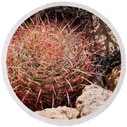 Red Mohave Barrel Cactus Round Beach Towel