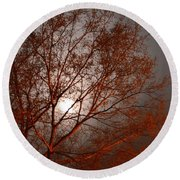 Red Oak At Sunrise Round Beach Towel