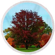 Red Oak In Loose Park Round Beach Towel