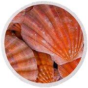 Red Orange Sea Shells Round Beach Towel