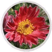 Red Pasque Flower Round Beach Towel