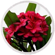 Red Plumeria Round Beach Towel