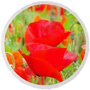 Red Poppy Flowers Art Prints Floral Round Beach Towel