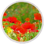 Red Poppy Flowers Meadow Art Prints Round Beach Towel