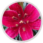 Red Refreshed Lily Round Beach Towel