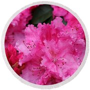 Red Rhododendrons Round Beach Towel