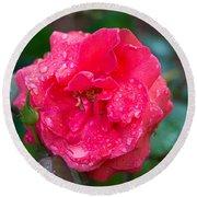 Savannah Ga Red Rose After A Rain Round Beach Towel