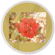 Red Rose At Noon Round Beach Towel