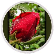 Red Rose Bud With Water Drops Round Beach Towel