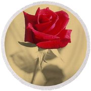 Red Rose Flower Isolated On Sepia Background Round Beach Towel