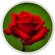 Red Rose Green Background Round Beach Towel by Az Jackson