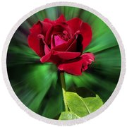 Red Rose Green Background Round Beach Towel