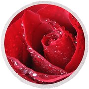 Red Rose Macro With Waterdrops Round Beach Towel