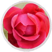 Red Rose Of Love Round Beach Towel