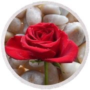 Red Rose On River Rocks 2 Round Beach Towel
