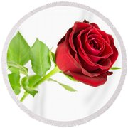 Red Rose On White Round Beach Towel