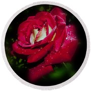 Red Rose With Water Drops Round Beach Towel
