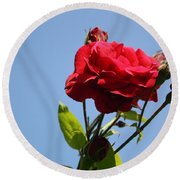 Red Roses With Blue Sky Background Round Beach Towel
