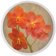 Red Scarlet Orchid On Grunge Round Beach Towel by Rudy Umans