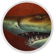 Red Sea Shark Round Beach Towel by James W Johnson