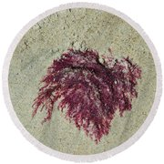Red Seaweed Round Beach Towel