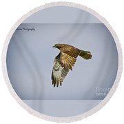 Red-shouldered Hawk Flyby Round Beach Towel