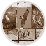 Red-shouldered Hawk Poster - Sepia Round Beach Towel by Carol Groenen