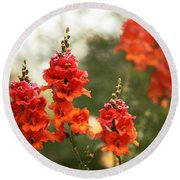 Red Snapdragons Round Beach Towel