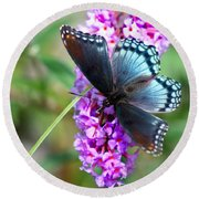 Red Spotted Purple Butterfly On Butterfly Bush Round Beach Towel