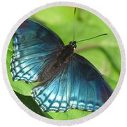 Red-spotted Purple Round Beach Towel