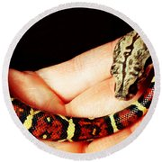 Red Tail Baby Boa - Snake - Pet Round Beach Towel