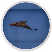 Red Tail Calling Round Beach Towel