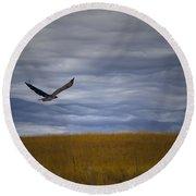 Red Tail Hawk Over The Prairie Round Beach Towel