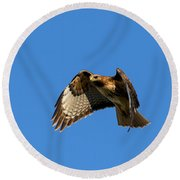 Red-tail Hover Round Beach Towel