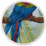 Red Tail Macaw Too Round Beach Towel