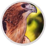 Red Tailed Hawk - 59 Round Beach Towel