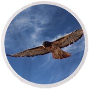 Red Tailed Hawk Round Beach Towel