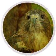 Red-tailed Hawk II Round Beach Towel