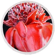 Red Torch Ginger On Black Round Beach Towel
