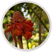 Red Torch Ginger Lily In Hawaii Round Beach Towel