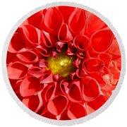 Red Tubular Flower Round Beach Towel