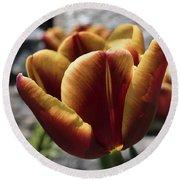 Red Tulip  2116 Round Beach Towel