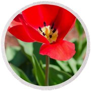 Red Tulip Round Beach Towel