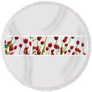 Red Tulips From The Bottom Up Triptych Round Beach Towel