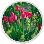 Red Tulips In Skagit Valley Round Beach Towel by Inge Johnsson