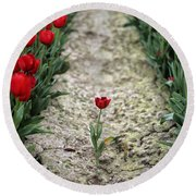 Red Tulips Round Beach Towel by Jim Corwin