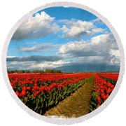 Red Tulips Of Skagit Valley Round Beach Towel