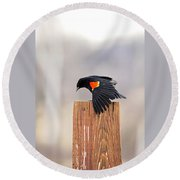 Red Wing Black Bird On Post Round Beach Towel